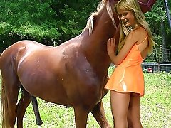 X slut playing with trained for sex brown horse