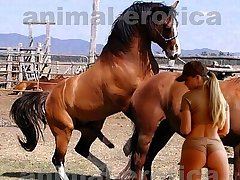 Huge stallion surrounding passion with very horny beauty